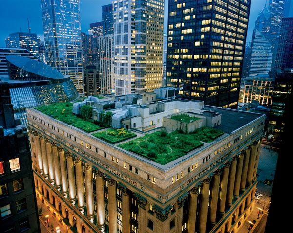 Зеленая крыша в Чикаго