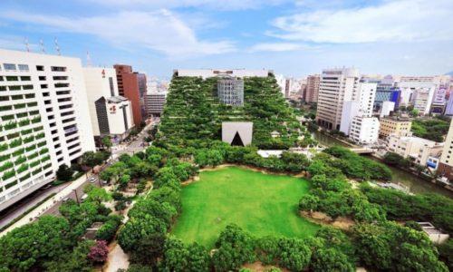 Зеленые крыши Японии