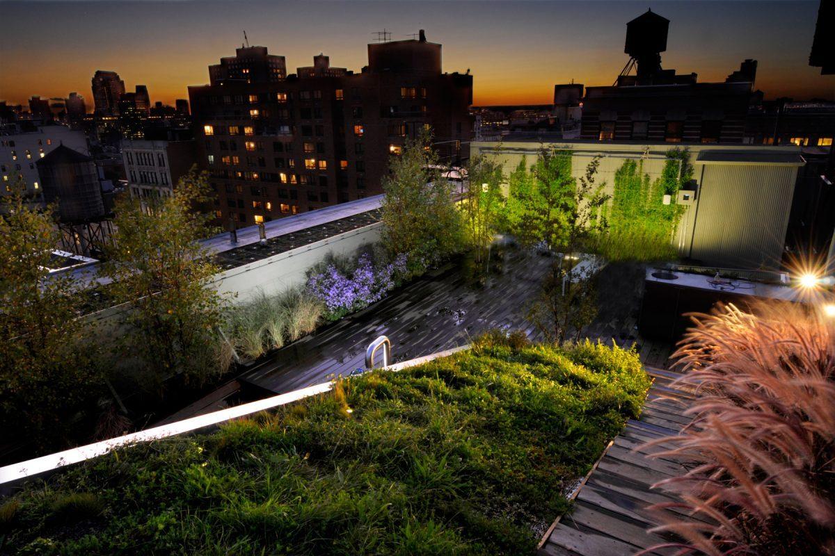История зеленых крыш