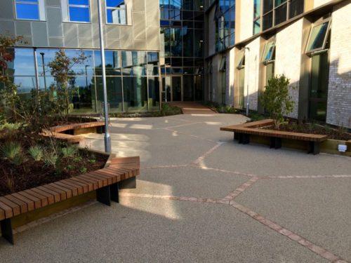 Интеграция природы в городские пространства с биофилическим дизайном